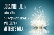 Coconut Oil Mother's Breast Milk Lauric Acid